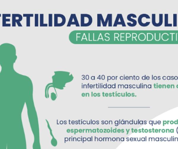 Infertilidad Masculina